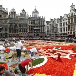 img_pod_1508-pod-gardeners-flower-carpet-at-brussels-grand-palace-jpg