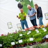flowertrials-trialfield-1-jpg