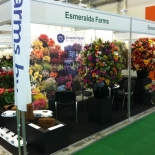 Flowers and Hortech 2013