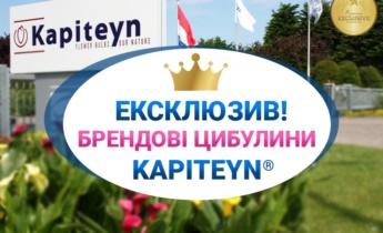 Новий партнер Флоріум — королівський бренд цибулин Kapiteyn