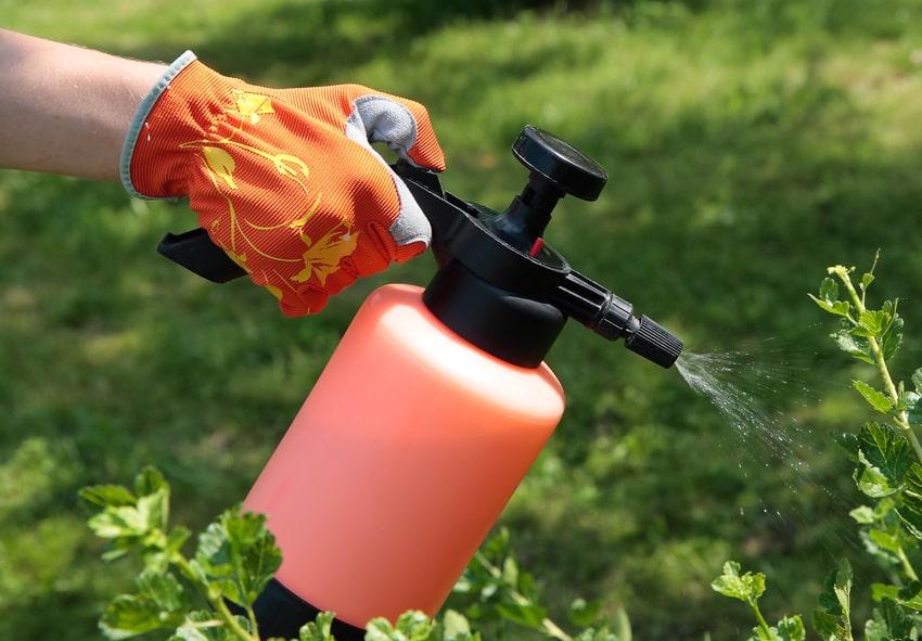Засоби захисту для Вашого саду фото опис