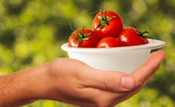 Квашеные помидоры: топ лучших рецептов