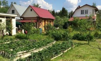 Планування садової ділянки