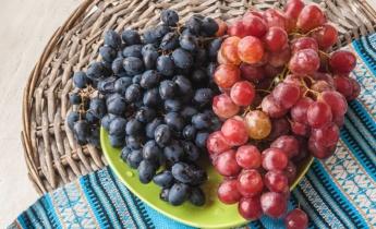 Як обрати сорти винограду для дачі