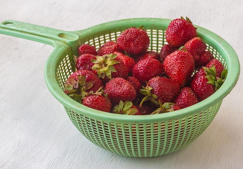 Відбірні полуниці для варення фото опис