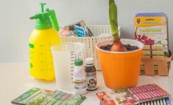 Засоби захисту для кімнатних рослин
