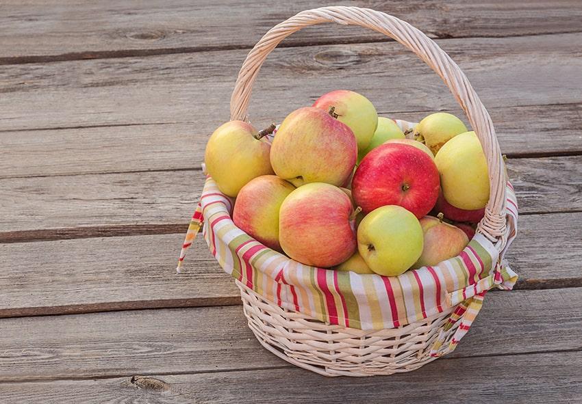 яблука для приготування пюре фото опис