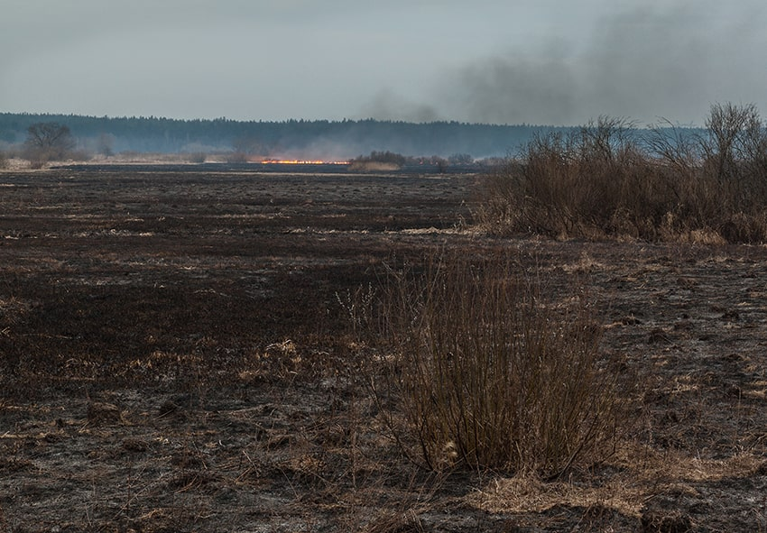 Сірі хмаои після спалювання фото опис