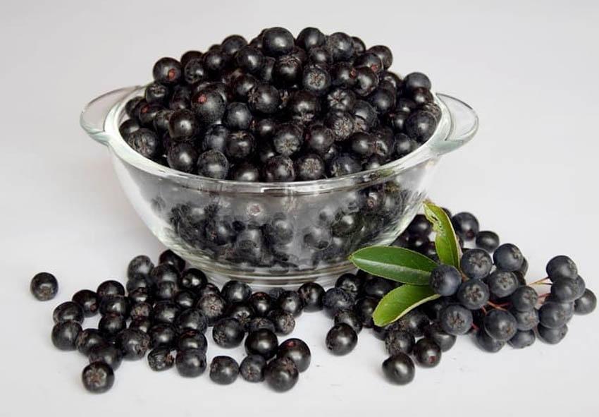 Блюда из черноплодной рябины фото описание