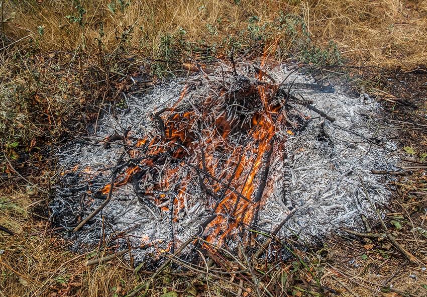 Спалювання рослинних залишків фото опис