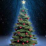 Фотоконкурс «Елочка — новогоднее чудо!»