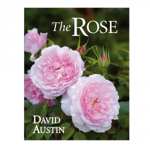 The_Rose_Book_1