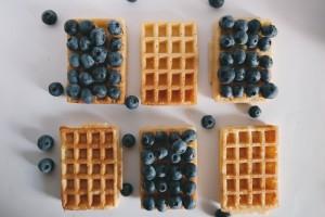 berries-1846616_1280