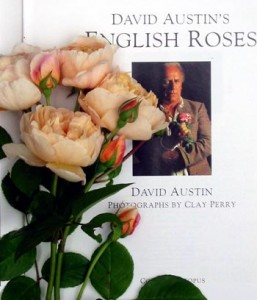 david-austin-book