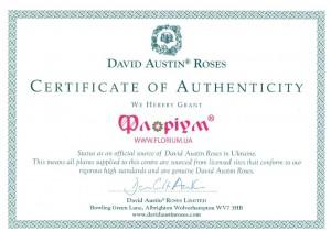 florium-ofitsy-al-ny-j-predstavitel-david-autin-v-ukraine1