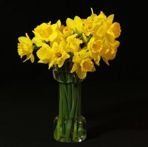 flower-vase-94362_640