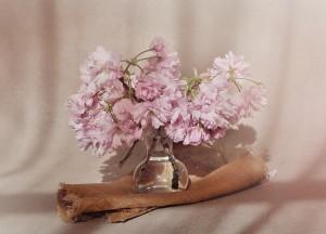 flowers-1369124_1280