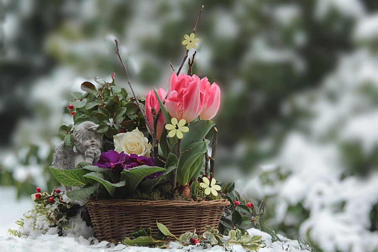 февраль садово-огородные работы фото описание смотреть