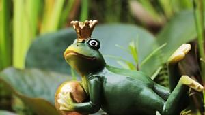 frog-prince-2398891_1280