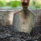 Какие инструменты нужны для ухода за садом?