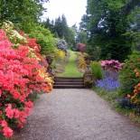 Принципы проектирования и организации сада. Сказочный уголок вместо беспорядочного скопления растений
