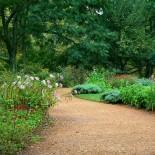 Как создать гравийный сад?