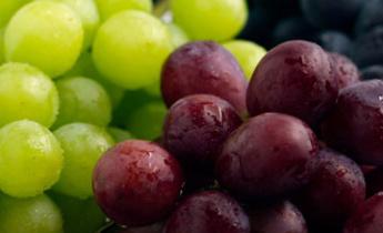 Как выращивать и ухаживать за виноградом?