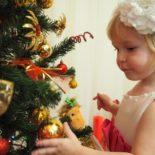 Как ухаживать за новогодней елкой в горшке дома?