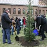 Один из наших клиентов, ЧНУ им. Ю.Федьковича, заложил Библейский сад