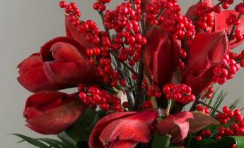 Как создать новогодний букет из красных гиппеаструмов (амариллисов)?