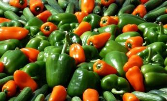 Выращивание овощей у себя дома