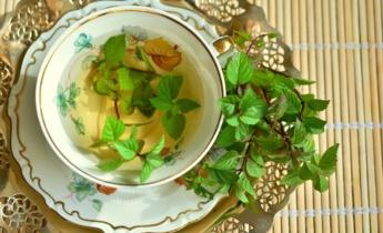 Растения для здоровья: травы, овощи и декоративные растения с целебными свойствами