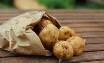 Сорта картофеля: Какой картофель выбрать для приготовления блюд