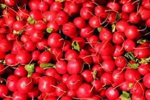 radishes-1623915_960_720