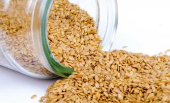 Покупка семян в интернет-магазине FLORIUM.UA