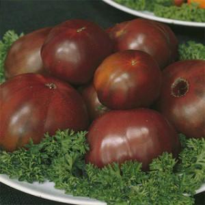 tomato-black-russian