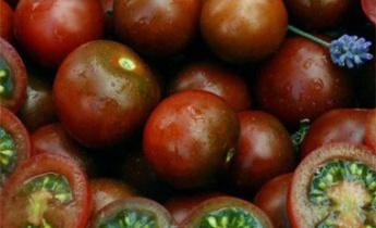 Почему так любят томатBrown Berry?