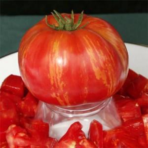 tomato_vintage_wine