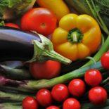 Как правильно сеять семена овощей, чтобы получить здоровую и крепкую рассаду?