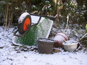 сад зимой фото, описание, смотреть